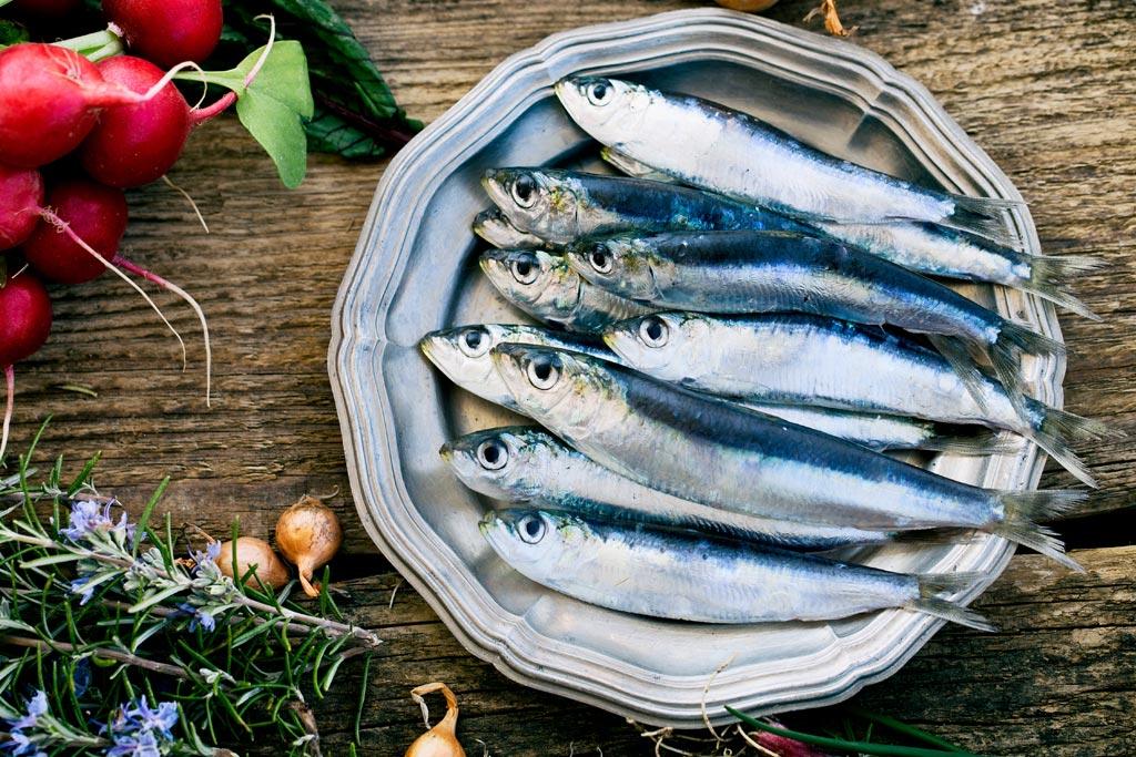 Omega 3 nelle sardine