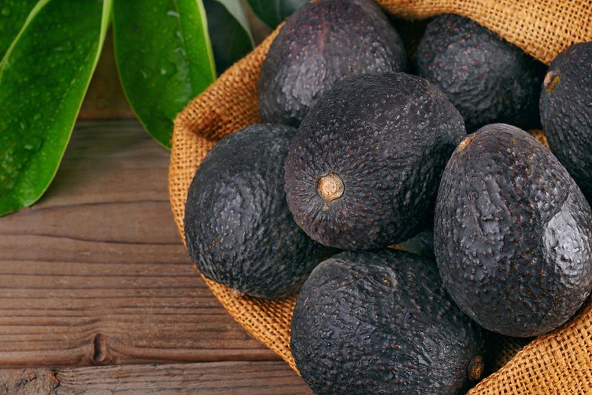cesto poggiato su tavolo di legno scuro pieno di avocado Hass maturi